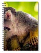 Squirrel Monkey Spiral Notebook