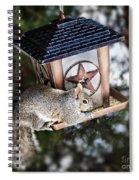 Squirrel On Bird Feeder Spiral Notebook