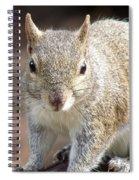 Squirrel Profile Spiral Notebook