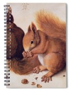 Squirrels Spiral Notebook