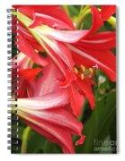 St. Joseph Lilies Spiral Notebook