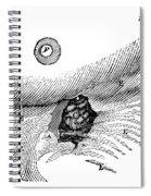 St. Martins Fistula Spiral Notebook