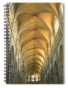 St. Maurice Cathedral In Vienne Spiral Notebook