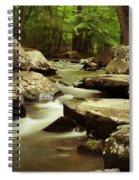 St. Peters Stream Spiral Notebook