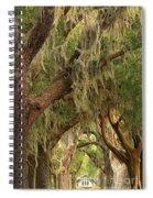 St Simons Island Oaks Spiral Notebook