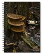 Stack Of Fungi Spiral Notebook