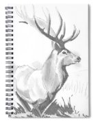 Stag Drawing Spiral Notebook