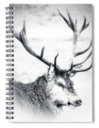 Stag In Black And White Spiral Notebook