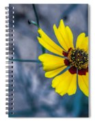 Stages Of Life Spiral Notebook