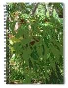 Staghorn Cutout Spiral Notebook