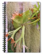 Staghorn Fern Spiral Notebook