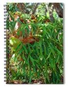 Staghorn Fern Spiral Notebook