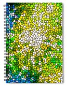 Stained Glass Beautiful Fireworks Spiral Notebook