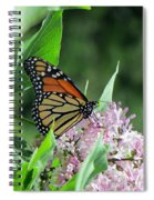 Marvelous Monarch Spiral Notebook