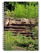 Staircase In The Forest Spiral Notebook