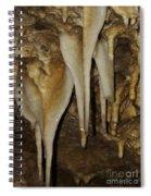 Stalactites  Spiral Notebook