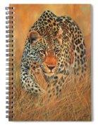 Stalking Leopard Spiral Notebook