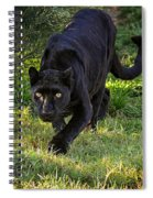 Stalking Leopard Spiral Notebook