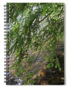 Stalking Trout Spiral Notebook