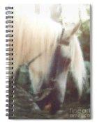 Stallion Spiral Notebook