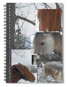 Stallions Collage There Is A Connection Spiral Notebook