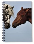Stalllion Buddies Spiral Notebook
