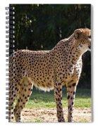 Stance Spiral Notebook