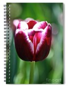 Stand And Shout Spiral Notebook