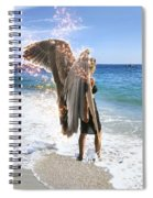 Stand Your Ground  Spiral Notebook