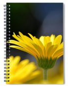 Standing Above The Rest Spiral Notebook