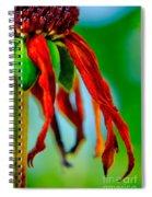 Standing Bright Spiral Notebook
