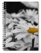 Standing Out From The Crowd 1 Spiral Notebook