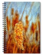 Standing Out From The Crowd II Spiral Notebook