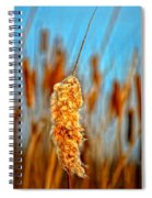 Standing Out From The Crowd Spiral Notebook