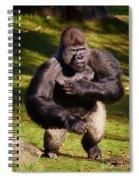 Standing Silverback Gorilla Spiral Notebook