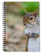Standing Squirrel Spiral Notebook