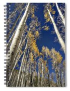 Standing Tall  Spiral Notebook