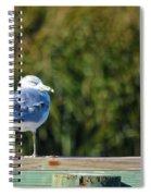 Standing Watch Spiral Notebook