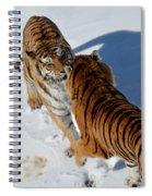 Standoff Spiral Notebook