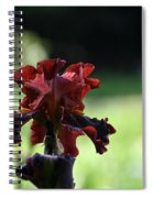 Standout Stand Tall Stand Proud Spiral Notebook