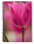 Standouts Spiral Notebook