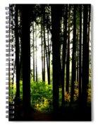 Stanley Park Triptych Right Spiral Notebook