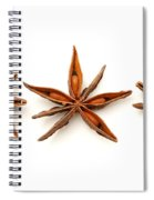 Star Anise Fruits Spiral Notebook