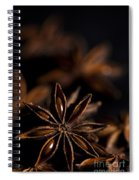 Star Anise Study Spiral Notebook