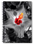 Star Bright Hibiscus Selective Coloring Digital Art Spiral Notebook