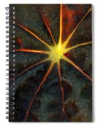 Star Bright Spiral Notebook