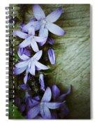 Star Climbers Spiral Notebook