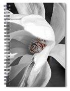 Star Magnolia Flower Spiral Notebook
