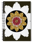 Star Of Stars Spiral Notebook