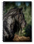 Star Stallion Spiral Notebook